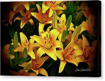 Canvas Print featuring the photograph Yellow Lilies by Joann Copeland-Paul