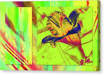 Canvas Print featuring the photograph Yellow Lilly Color Palette by Irma BACKELANT GALLERIES