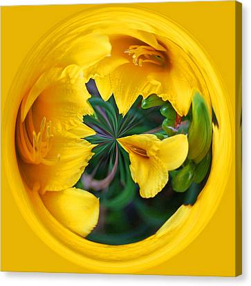 Canvas Print featuring the photograph Yellow Lily Orb by Bill Barber