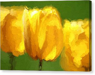 Yellow On Green Canvas Print by Dan Sproul