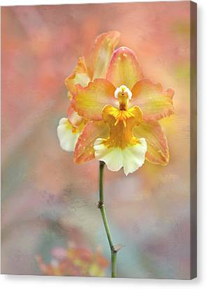 Canvas Print featuring the photograph Yellow Orchid by Ann Bridges