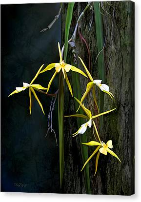 Canvas Print featuring the digital art Yellow Orchid by Thanh Thuy Nguyen