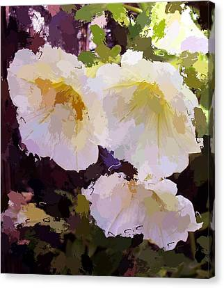 Yellow Petunias Canvas Print by Carol Grimes
