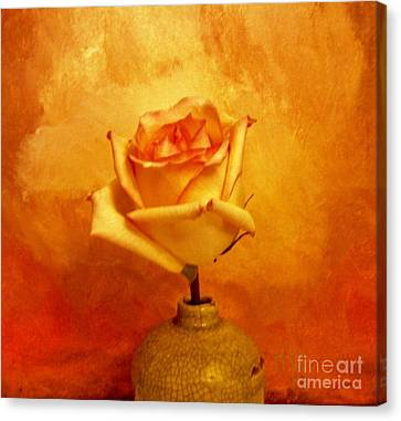 Yellow Red Orange Tipped Rose Canvas Print by Marsha Heiken