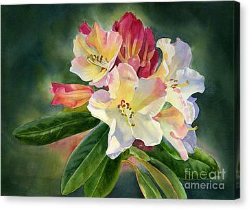 Yellow Rhododendron Dark Background Canvas Print by Sharon Freeman