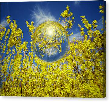 Canvas Print featuring the photograph Yellow by Robert Geary