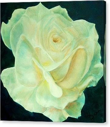 Yellow Rose 2 Canvas Print by Dana Redfern