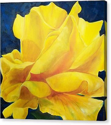 Yellow Rose Canvas Print by Dana Redfern