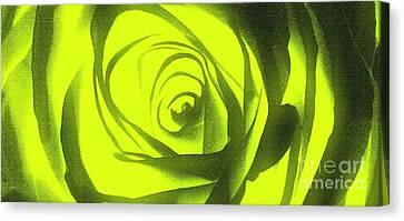 Yellow Rose Of Texas II Canvas Print by Al Bourassa