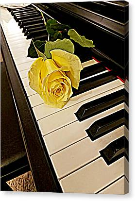 Yellow Rose On Piano Keys Canvas Print