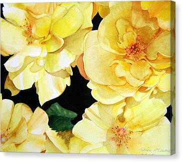 Yellow Roses Canvas Print by Patrick McClintock