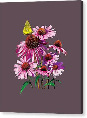 Coneflower Canvas Print - Yellow Sulphur Butterfly On Coneflower by Susan Savad