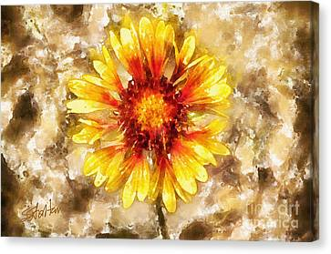 Yellow Sunshine Canvas Print by Shirley Stalter