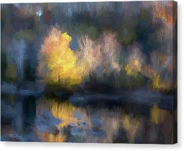 Yellow Tree Autumn Reflection Canvas Print