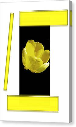 Digital Installation Art Canvas Print - Yellow Tulip 3 Of 3 by Tina M Wenger