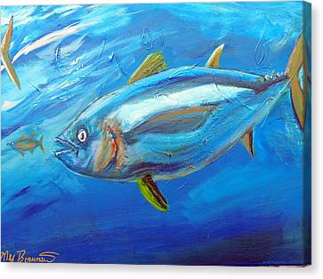 Yellowfin Muscle Canvas Print by Max Bowermeister