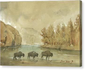 Yellowstone And Bisons Canvas Print
