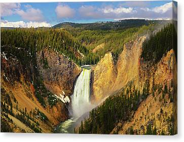Yellowstone Canvas Print - Yellowstone Canyon Springtime by Greg Norrell