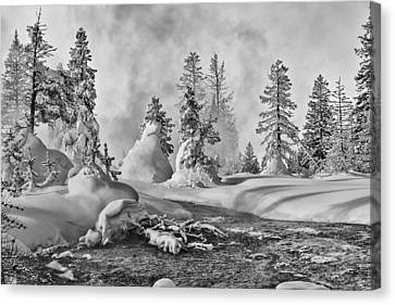 Yellowstone In Winter Canvas Print by Gary Lengyel