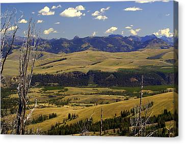 Yellowstone Landscape 2 Canvas Print by Marty Koch