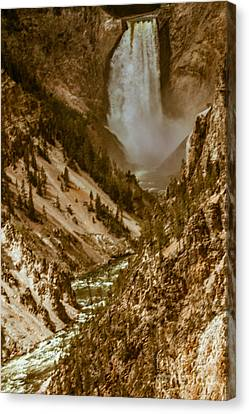 Yellowstone Lower Falls Canvas Print