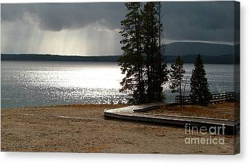 Silver Moonlight Canvas Print - Yellowstone National Park 2  by Xueling Zou