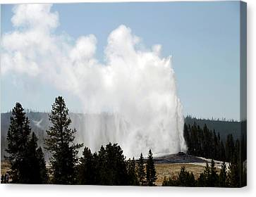 Yellowstone Park A View Of Old Faithful Unrestrained Canvas Print by Thomas Woolworth