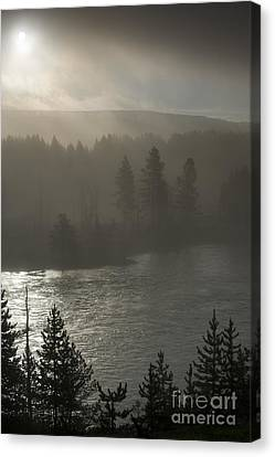 Yellowstone River Fog Canvas Print by Sandra Bronstein