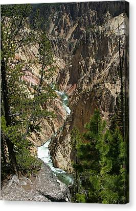 Yellowstone River Canvas Print by Linda Phelps
