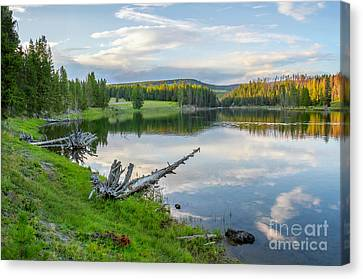 Yellowstone River Off Grand Loop Canvas Print