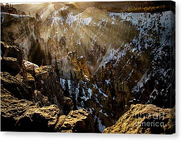 Yellowstones Grand Canyon Canvas Print