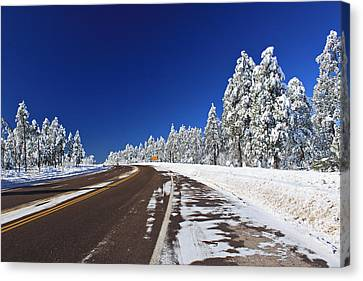 Canvas Print featuring the photograph Yes Its Arizona by Gary Kaylor