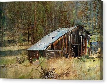 Yesteryear Shed 2 Canvas Print by Dale Stillman
