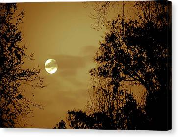 Yesteryears Moon Canvas Print by DigiArt Diaries by Vicky B Fuller