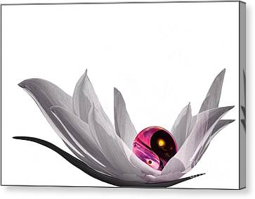 Yin Yang Canvas Print by Jacky Gerritsen