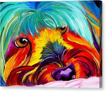 Maltese - Dreaming Of Biscuits Canvas Print
