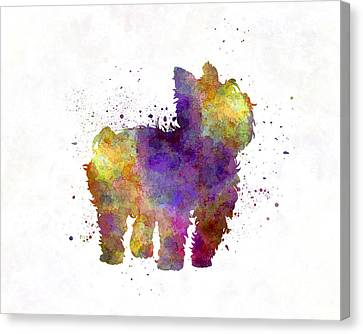 Yorkshire Terrier In Watercolor Canvas Print by Pablo Romero