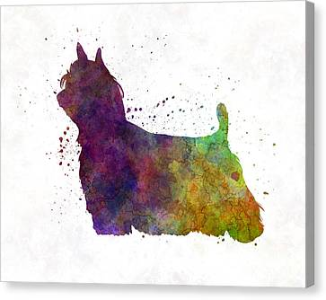 Yorkshire Terrier Long Hair In Watercolor Canvas Print by Pablo Romero