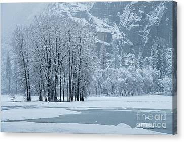 Canvas Print featuring the photograph Yosemite - A Winter Wonderland by Sandra Bronstein