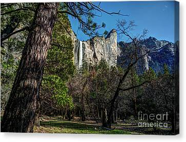 Canvas Print - Yosemite Bridalveil Fall by Terry Garvin