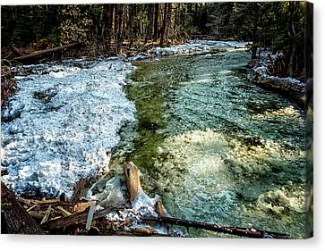 Yosemite Creek With Some Frazil Ice Canvas Print by Belinda Greb