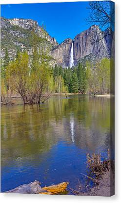 Canvas Print featuring the photograph Yosemite Falls Cook's Meadow by Scott McGuire