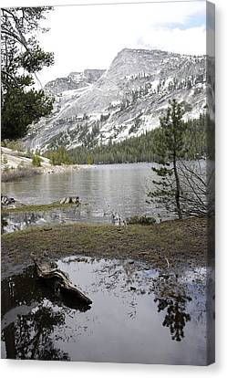 Yosemite Lake Reflections Canvas Print by Harold Piskiel