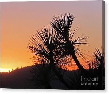 Yosemite Sunset Canvas Print