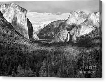 Yosemite Valley Canvas Print by Sandra Bronstein