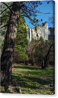 Canvas Print - Yosemite Valley View Of Bridalveil Fall by Terry Garvin