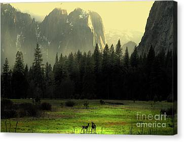 Yosemite Village Golden Canvas Print by Wingsdomain Art and Photography