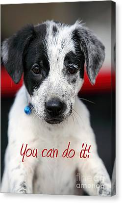 You Can Do It Canvas Print by Amanda Barcon