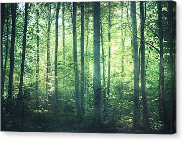 Wiccan Canvas Print - You Can Still Hear Her Song by Violet Gray