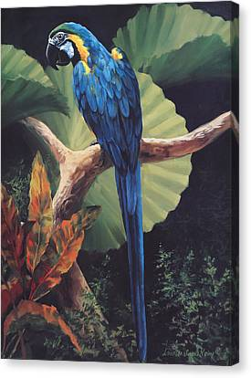 Parrots Canvas Print - You Don't Say by Laurie Hein
